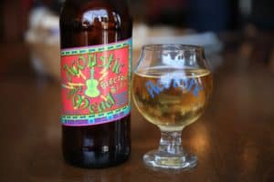 Acoustic Brewing Company Electric-BzZz-
